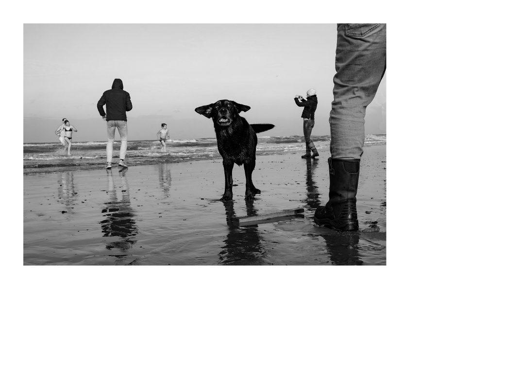4 CLASSIC 11 BW_NY Dive Dog